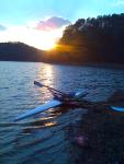 Sunset Flyweight